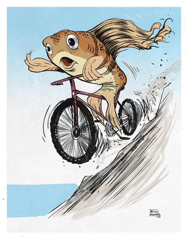 bikefish